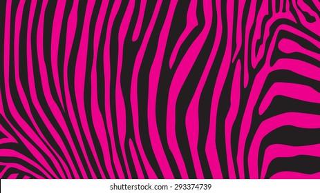 Pink zebra stripes pattern, illustration