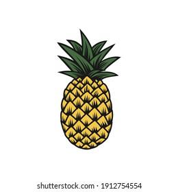 pinnaple vector art - logo design