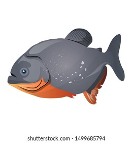 Piranha Fish Vector Illustration Isolated On White Background
