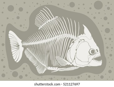 piranhas skeleton