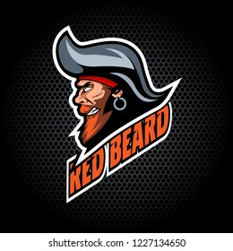 Pirate Head from side. Can be used for club or team logo. Vector graphic.