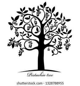 Pistachio tree isolated on white. Pistachio nuts. Silhouette. Icon. Sign. Vector Illustration