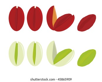 Pistachios isolated - vector version