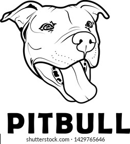 Pit Bull  dog  illustration design