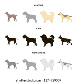 Pit bull, german shepherd, chow chow, schnauzer. Dog breeds set collection icons in cartoon,black,monochrome style vector symbol stock illustration web.