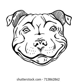 pit bull, smiling dog face, portrait, sketch, black and white vector illustration