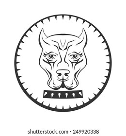 Pit bull terrier logo. Dog face with collar label.