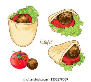 Pita with falafel and vegetables. A set of various sketches of falafel in pita.  Color vector illustration of Middle Eastern cuisine.