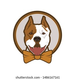 Pitbull boxer head dog mascot in bow-tie