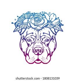 Pitbull Dog Face Rose Flower with Vintage Pet Design. Floral frame ornament vector style. Decoration Design Wreath illustration.