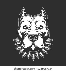 Pitbull Head isolated on black background.Vector illustration.