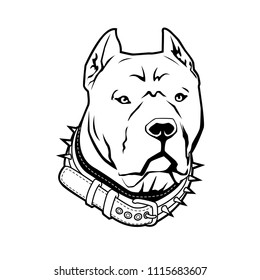 Pitbull terrier vector illustration