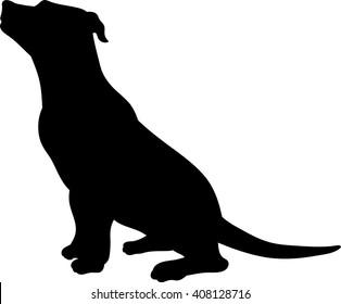 Pittbull vector silhouette