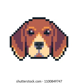 Pixel art beagle dog face vector icon.