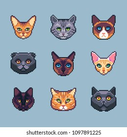 Pixel art cats set. Vector illustration of different cat breeds.
