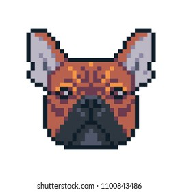 Pixel art french bulldog vector icon.