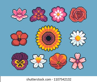 Pixel art popular flowers vector icon set.