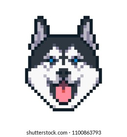 Pixel art siberian husky dog vector icon.