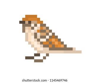 Pixel art sparrow isolated on white background. 8 bit little bird icon. Urban wildlife animal. Cute birdie character. Retro vintage 80s; 90s slot machine/video game graphics.