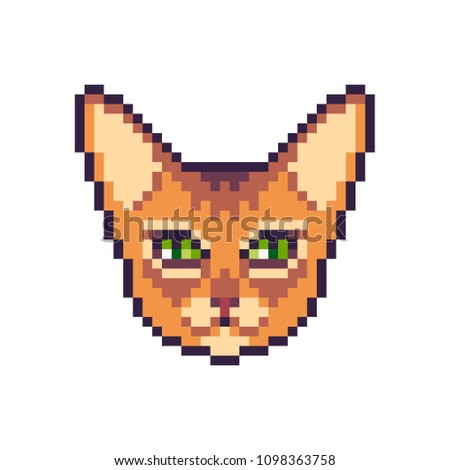 Pixel art vector abyssinian cat icon isolated on white background.
