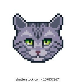 Pixel art vector American shorthair icon isolated on white background.