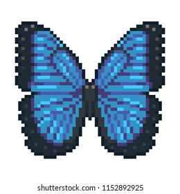 Pixel art vector blue morpho butterfly isolated on white background.