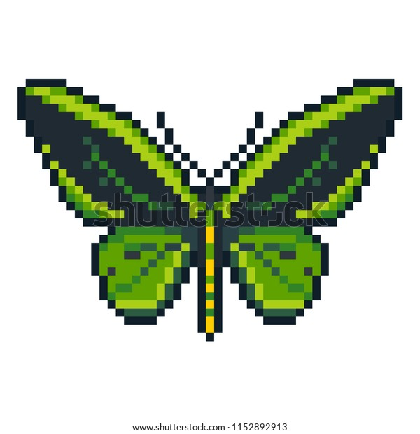 Pixel art vector cape birdwing butterfly isolated on white background.