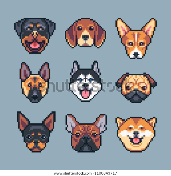 Pixel Art Vector Dogs Breeds Icons Stock Vector Royalty