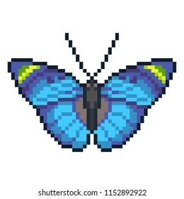 Pixel art vector forester butterfly isolated on white background.