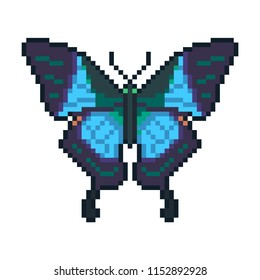 Pixel art vector peacock butterfly isolated on white background.