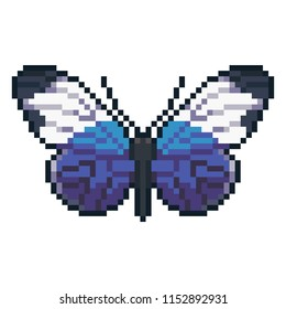 Pixel art vector sapho longwing butterfy isolated on white background.