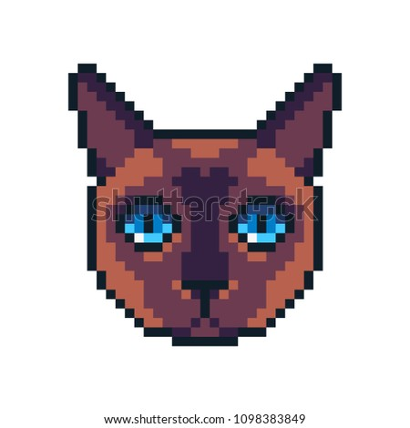 Pixel art vector Siamese cat icon isolated on white background.