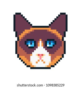 Pixel art vector snowshoe cat icon isolated on white background.