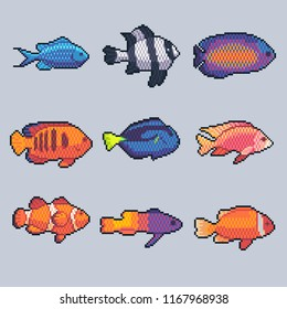 Pixel art vector tropical fish icons set.