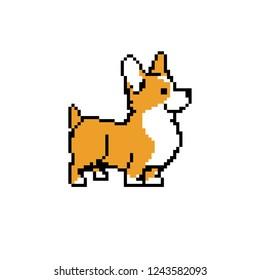 pixel dog corgi vector