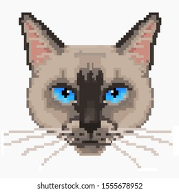 Pixel red  face cat high detailed isolated vector