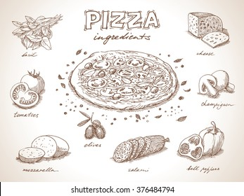 Pizza with ingredients free hand drawing, sketch style