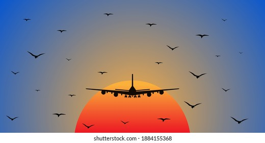 a plane flying into the sunset, accompanied by birds