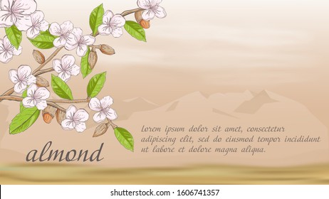 plant banner nature plant almond branch fruit nuts flowers for decoration design on the background of mountains in the desert with clouds with a place for text and title vector EPS 10