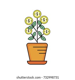 plant with coins leaves inside flowerpot