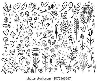 Plant and Flower Specimen Doodle Set Black Silhouettes Digital Drawing