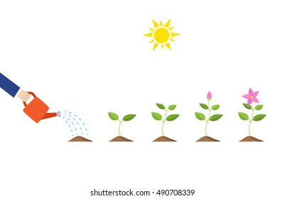 Plant glowing, Abstract saving money, vector