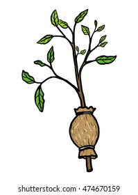 plant graft / cartoon vector and illustration, hand drawn style, isolated on white background.