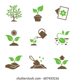 Plant growing icons set. Green, brown icons on a white background
