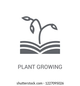 plant growing on book icon. Trendy plant growing on book logo concept on white background from Nature collection. Suitable for use on web apps, mobile apps and print media.