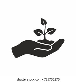 Plant in hand. Vector icon.