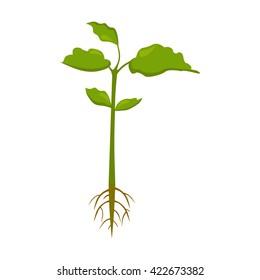 Plant icon.