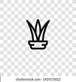 plant icon from house plants collection for mobile concept and web apps icon. Transparent outline, thin line plant icon for website design and mobile, app development
