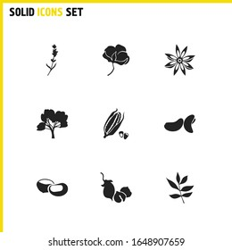 Plant icons set with cotton flower, ash tree leaf and lavender elements. Set of plant icons and lilac concept. Editable vector elements for logo app UI design.