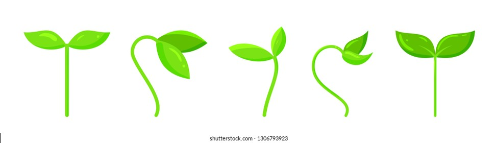 Plant icons set. Organic sign. Spring card design. Seedling kit. Sapling simple pictogram. Green grass cute poster. Nature symbol. Sprout growing banner. Flat style vector illustration isolated white